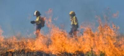 Three bush fire safety tips every Australian should know
